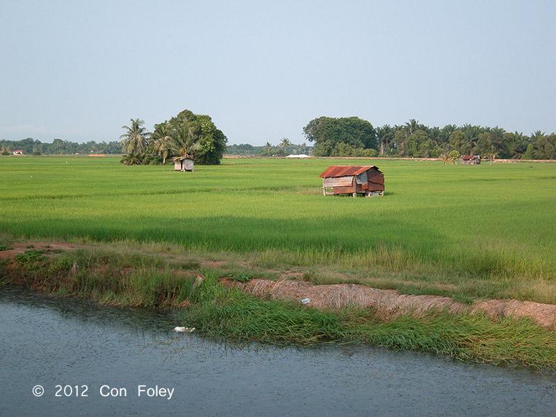 Sungai Rambai