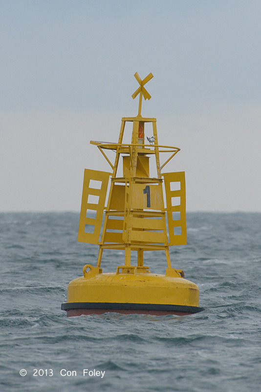 Cable Buoy