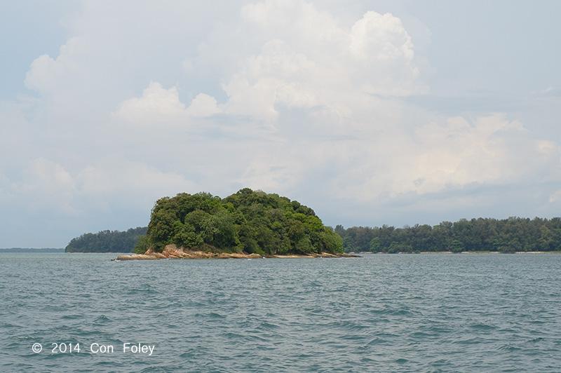 Pulau Salu